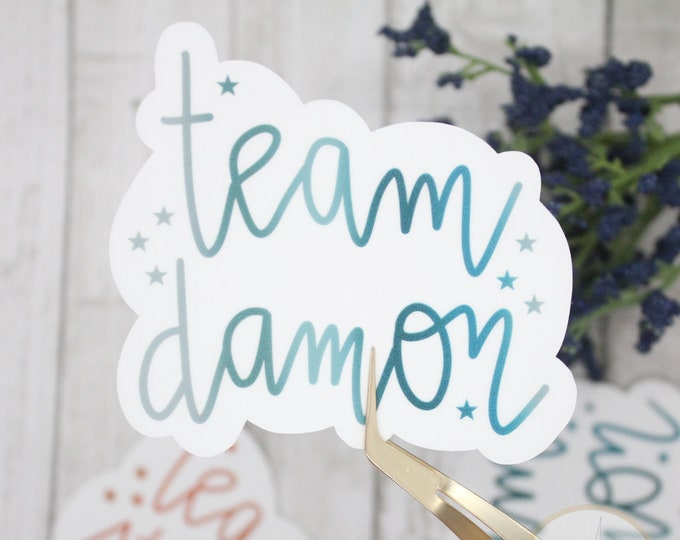 Team Damon Sticker, tvd stickers, sticker for waterbottle, sticker for laptop, small gift for teen, birthday gift for her, tv show stickers