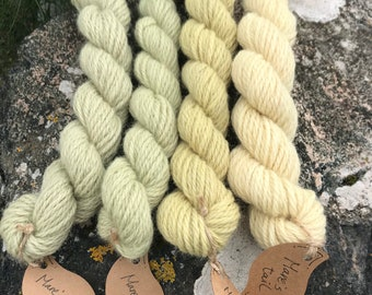 Assynt Wild Colours ~ 100% Shetland ~ Mare's Tail ~ 105g