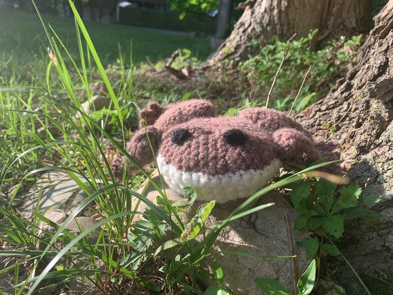 Large Stuffed Amigurumi Froggy PATTERN image 0