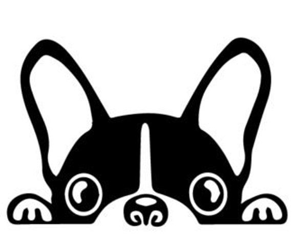 Boston Terrier Peeking Decal Sticker for your car truck vehicle wall phone window