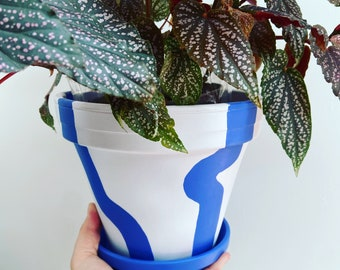 Customisable plant pot   hand painted terracotta pot   custom size and colour