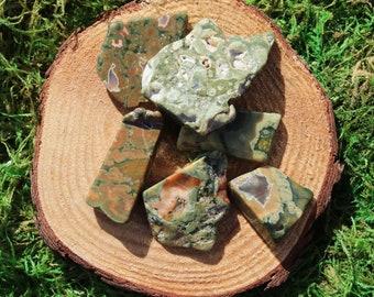 Rainforest Rhyolite Free Form Polished Pieces
