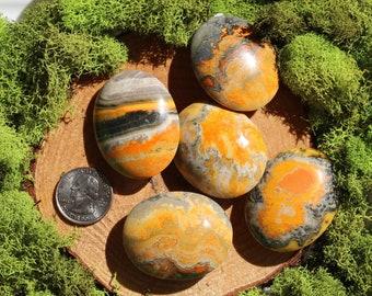 Bumble Bee Jasper Palm Stones