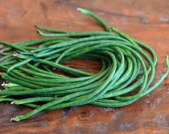 Yard Long Bean Seeds Asparagus Bean Long Podded Cowpea Chinese Long Bean Bodi/Bora Snake Bean Pea Bean Seeds Non GMO Organic Heirloom