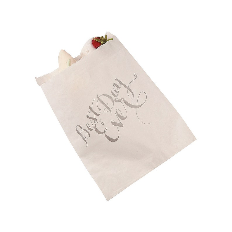 Party Supplies Best Day Ever Treat Bags 50 Pieces
