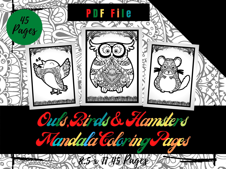 eulen vögel und hamster mandala malvorlagen für kinder  etsy