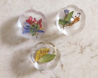 Pressed flowers magnet, tiny nature gift, kitchen gift, boho kitchen decor, gift for garden lover, floral fridge magnet