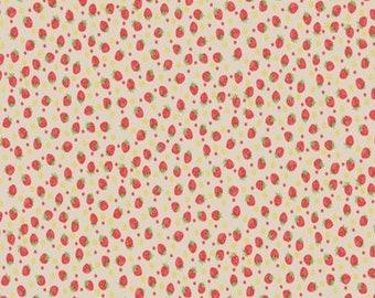 Cream - Strawberries - Little Strawberry Generation Collection - by Atsuko Matsuyama - ( AMSTRAW-CREAM )