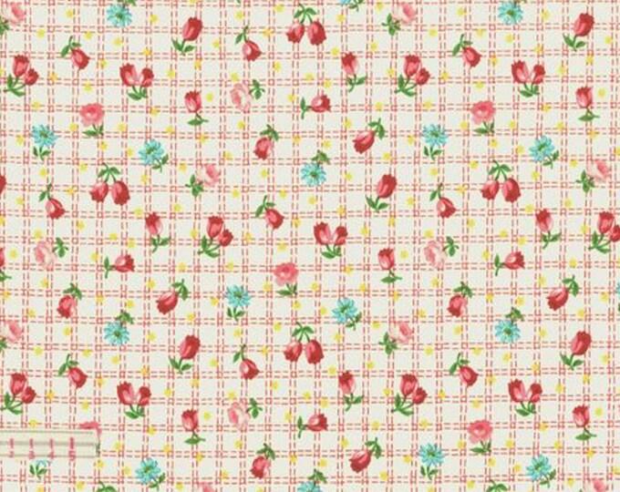 Cream - Tulips - Floral - Tulip Garden Collection - by Atsuko Matsuyama - ( AMTULIP-CREAM )
