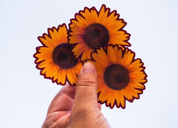 Entrelazados Flower Sticker 4-Pack| Floral Sticker Vinyl Sticker Multicolor Colorful