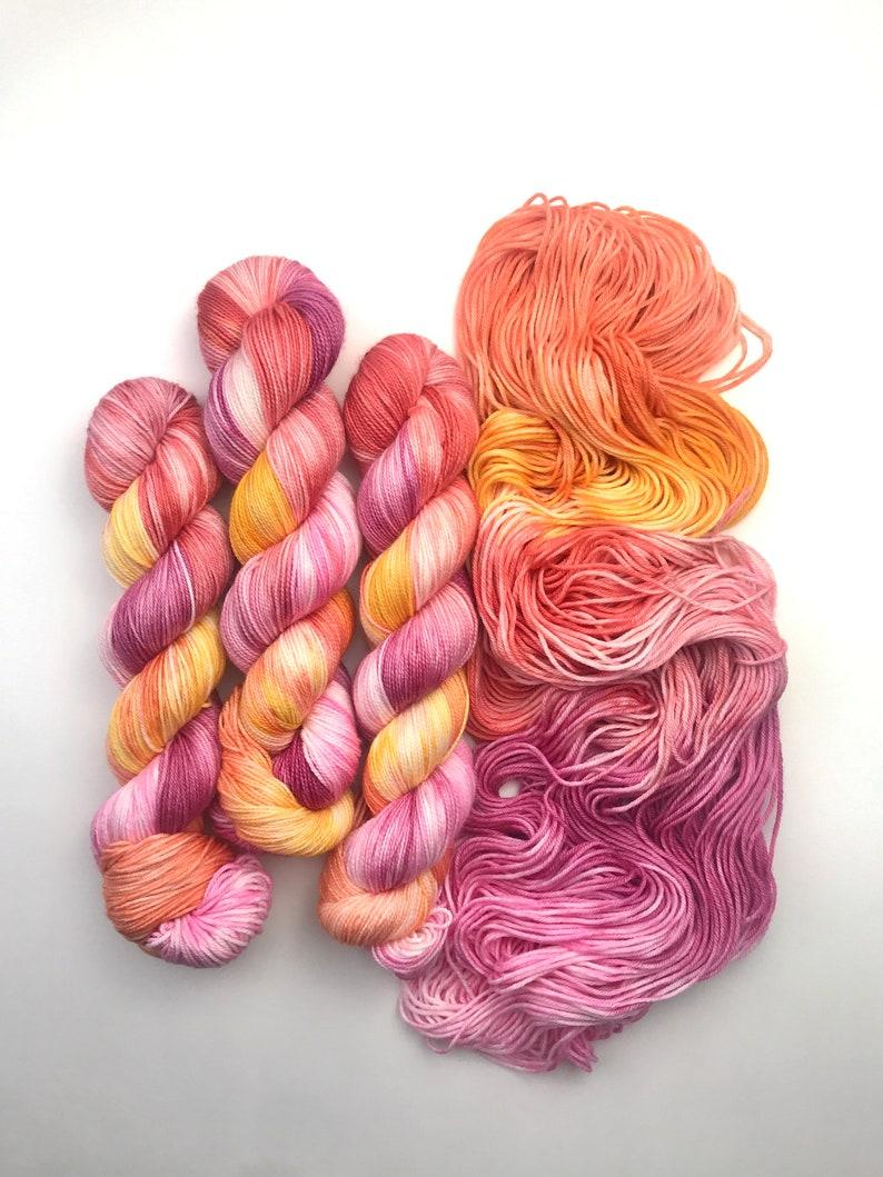 Tulip Spring Hand Dyed Yarn image 0