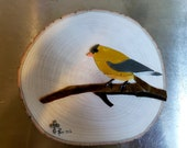 Goldfinch Stained Glass Mosaic