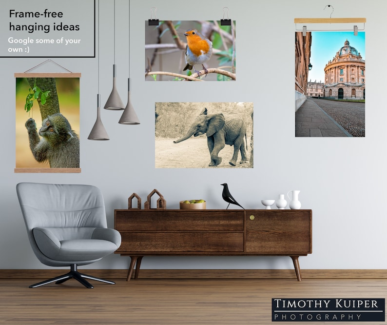 Gothic Arch Oxford University Wall Art Oxford Natural History Museum City Print Original Photography Vine An Oxfordian Wall