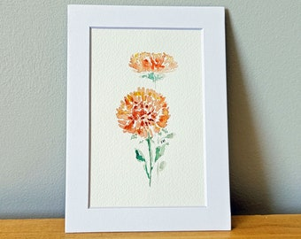 Mums Watercolor Painting - Matted
