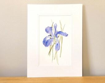 Hand Painted Purple Iris Watercolor - Original Artwork, Classic Wall Art