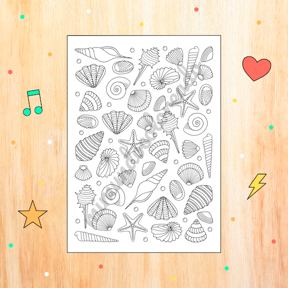 Drawing seashells for coloring summer coloring page maritime