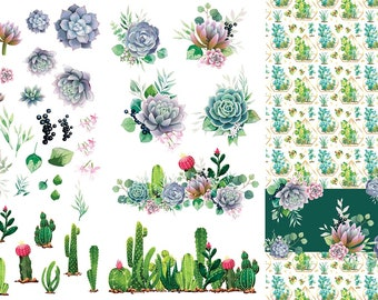 New Dixie Belle CACTUS Transfer, rub on decal , furniture transfer, Belles & Whistles Shipping Late March