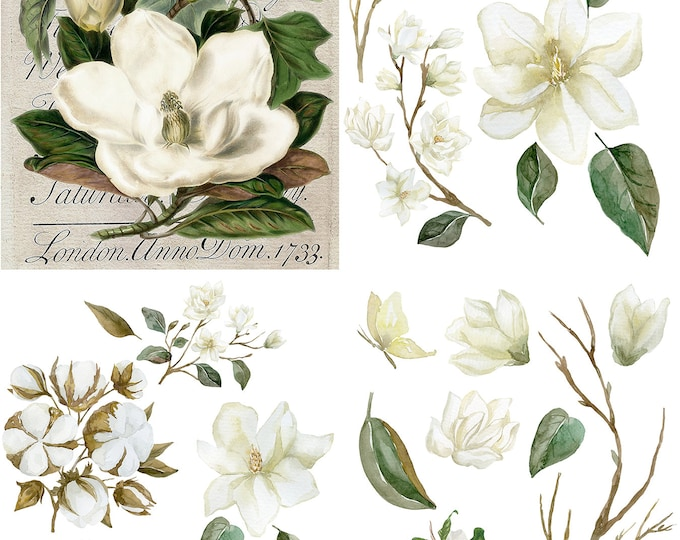 Featured listing image: New Dixie Belle Magnolia Garden transfer, rub on decal , furniture transfer, Belles & Whistles Shipping Late March