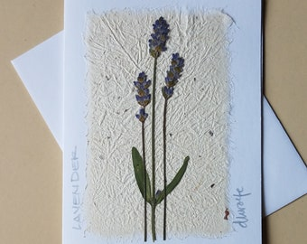 Cards: Herb note card
