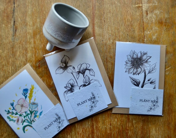 Plantable gift set   plantable card and mini Mojave grey planter   A6 card with Kraft envelope   blank inside