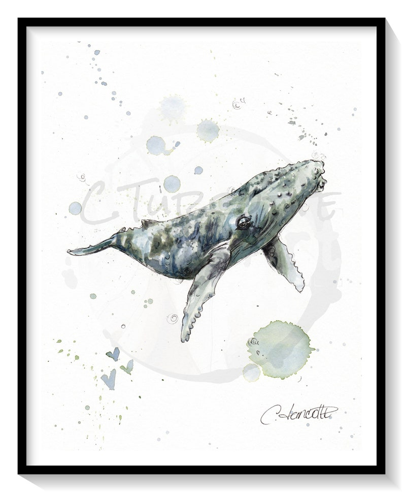 underwater life Marine Mammal Adventure original 8x10 watercolor blue ocean Humpback Whale 1 frame illustration seabed