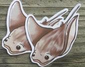 Waterproof Stingray Sticker Sea Creatures, Underwater, Laptop Sticker, Bumper Sticker, Mug, Cup, Journaling, Scrapbooking, Vinyl, Decal