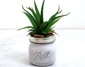 Light gray hand painted pint Mason Jar w fake succulents. Aloe artificial succulent vase. Neutral distressed small cubicle office decor