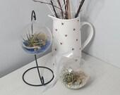 10cm Hanging Terrarium Glass Orb Globe Mini Garden Hanging Planter with Air Plant and Glass Pebble Stones Terrarium With Plant Kit