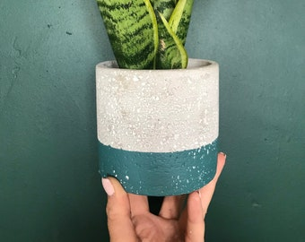 Handcrafted Cement Planter - Grey & Teal