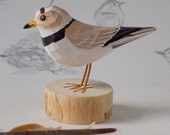 Piping Plover Woodcarving