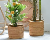 Woven Rattan Basket for Plant Pot, Storage Basket, Fruit Basket, Boho Basket, Bohemian Indoor Plant Pot