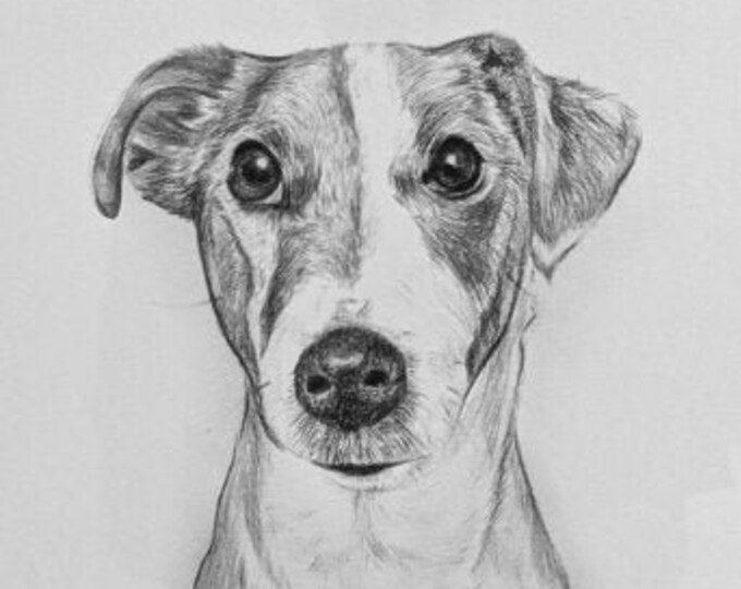 Pet Portrait   Handmade   Premium Artist Quality   Cat   Dog   Custom Pet Portrait   Gift for Pet Owners   Pets