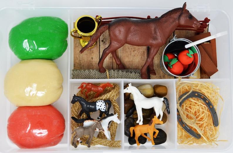 Horse PlayDough Kit Horse Bizzy Box Sensory Kit Horse