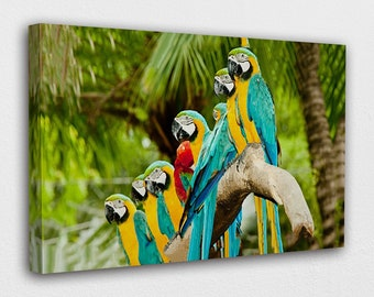 Canvas Wall Art Yellow And Blue Macaw With One Wign Open Canvas Print