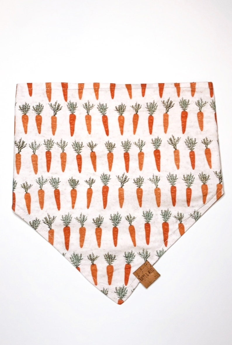 NEW Easter Bunny Dog Reversible Bandana  Carrot Orange Green Beige  Boho Chic Trendy Clothes  Spring Inspired  Cat Puppy Gift Apparel