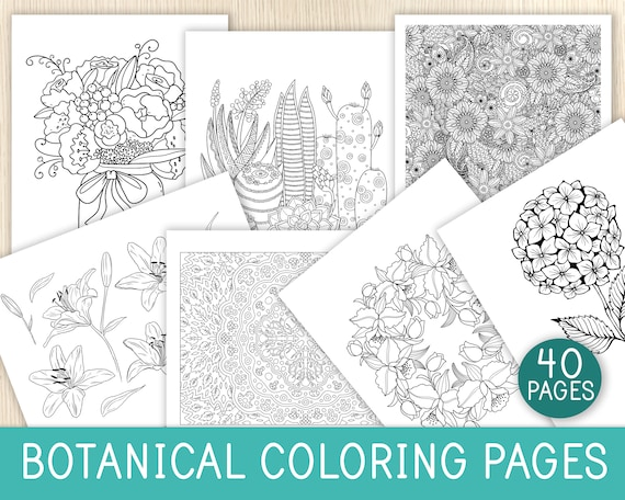 Botanical Coloring Pages 40 Sheets Kids & Adults Coloring