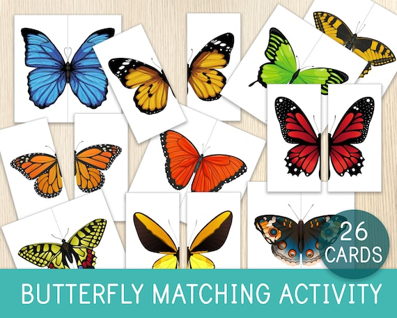Butterfly Matching Activity Butterfly Puzzles Kids Puzzles