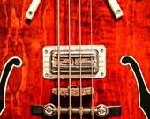 Detail of a 1968 Gretsch 6071 Bass Guitarl Fine Art Print (Giclee)