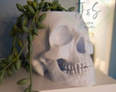 Human Skull Planter Pot Spooky Fall Halloween Decor // 3D Printed Drainage Optional Realistic Detailed Skull Replica Witchy Goth
