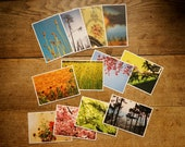 12 set of grass paper postcards sustainable