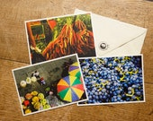 Set of 3 postcards grass paper sustainable VITALIX