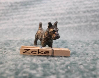 Personalized clothespins - print names or small pictures on wooden clips