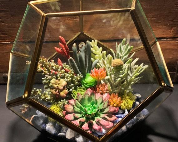 Custom Order / Antique Gold Hexagon Faux Succulent Glass Terrarium