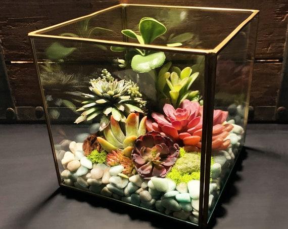 Amazonite Antique Gold Cube Faux Succulent Glass Terrarium