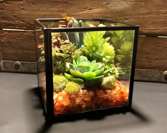 Carnelian Antique Black Box Faux Succulent Glass Terrarium