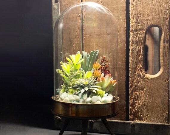 Amazonite Alien Cloche Faux Succulent Glass Terrarium