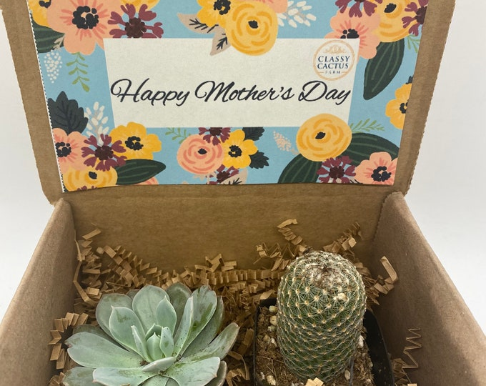 Cactus and Succulent Mother's Day Gift Box - (set of 2) Happy Mother's Day floral.