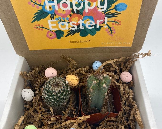 Happy Easter Cactus Box - set of 2 (yellow box)