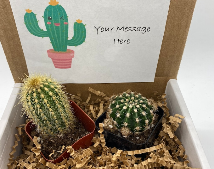 Cactus Gift Box - (set of 2) Custom Card - Use your own message.