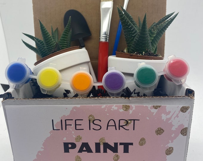 Succulent Planter (Set of 2) DIY Gift Box - Life is Art